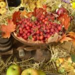 Sunday Worship – Harvest Festival, Twentieth Sunday after Trinity